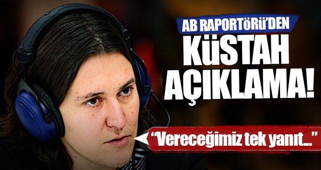 AB Türkiye Raportörü: İlişkileri dondurmak vereceğimiz tek yanıt