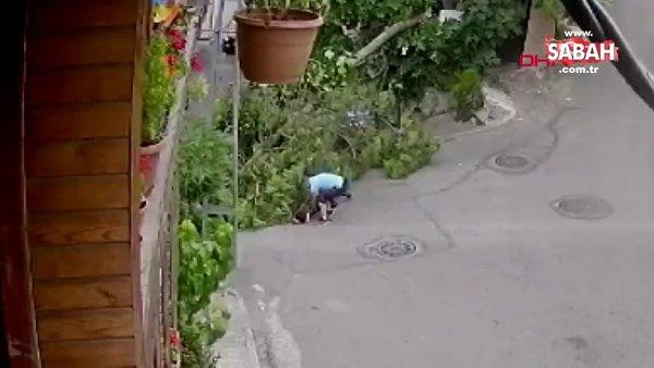 İstanbul Üsküdar'da ağaç bisikletli çocuğun üstüne devrildi | Video