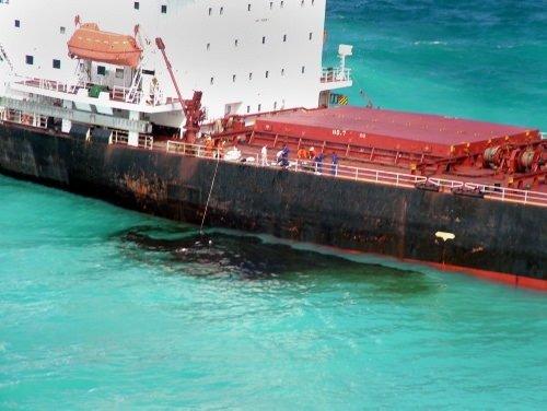 Mercan cenneti petrole bulandı