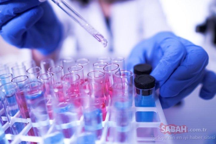 Koronavirüs avcıları iki yeni virüs keşfetti! Daha önce görülmemişti