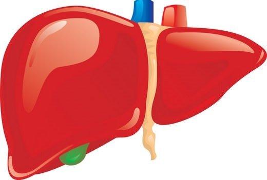 Karaciğer yağlanması için tam bir şifa deposu!
