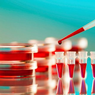 Hamilelik kan testi ne zaman ve nasıl yapılır?