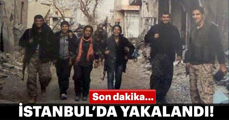 Son dakika... PKK'nın önemli ismi İstanbul'da yakalandı