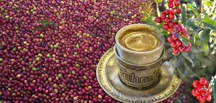 Menengiç kahvesi midenizdeki o soruna ilaç gibi geliyor