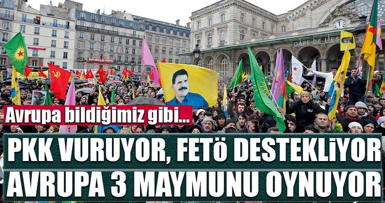 PKK'lılar saldırıyor Avrupa izliyor