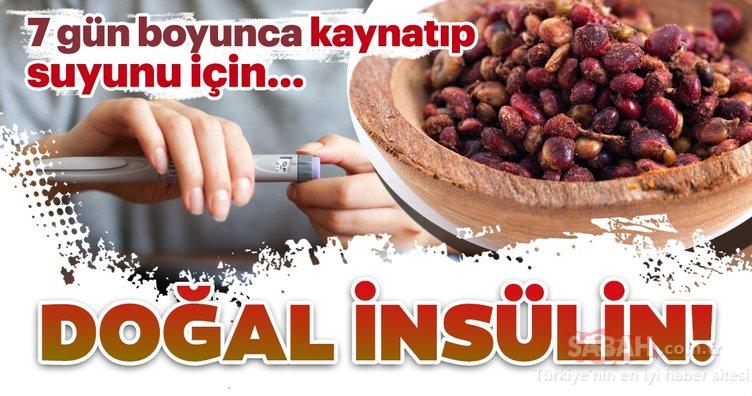 Bu besin adeta doğal insülin görevi görüyor! İşte kan şekerini düzenleyen besinler ve faydaları...