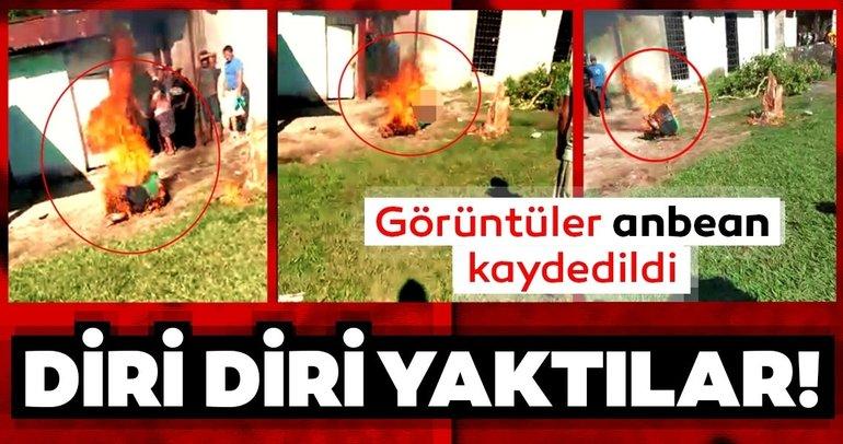 Dehşet verici son dakika haberi: Köylüler sokak ortasında diri diri yaktılar! Ülke bu olayı konuşuyor…
