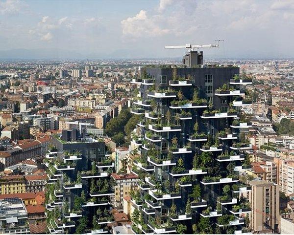 Hava kirliliğiyle mücadelede yeni silah: Dikey ormanlar