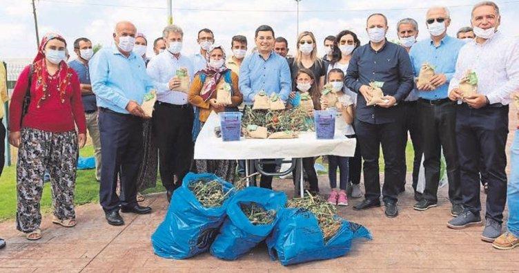 Sera atıklarından organik kompost