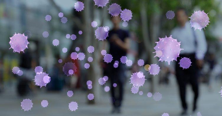Türkiye'de 'Maymun Çiçeği virüsü' görüldü mü? Uzman isimden dikkat çeken uyarı: Bu belirti varsa…