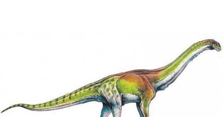 Dünyanın en büyük dinozoru keşfedildi