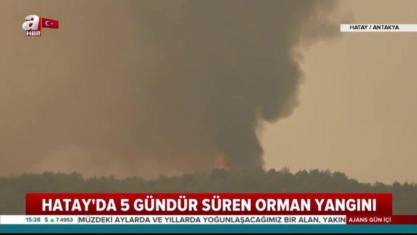 Hatay'daki orman yangınından son dakika haberi: Yangın ne durumda? Söndürüldü mü? | Video