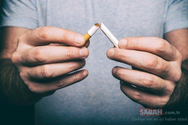 Türk bilim insanları, nikotinin bağışıklık sistemini saldırganlaştırdığını kanıtladı