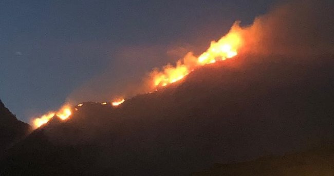 Bodrum'da otluk alanda yangın