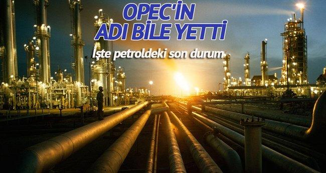OPEC'in adı yetti: Varil fiyatı 48 dolar