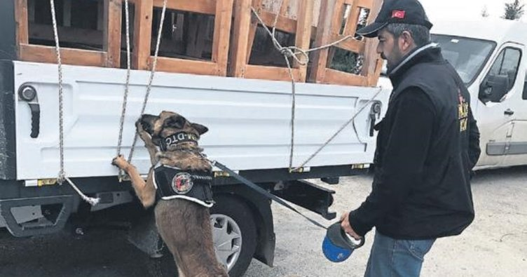 Gardiyanın aracından 217 kilo esrar çıktı