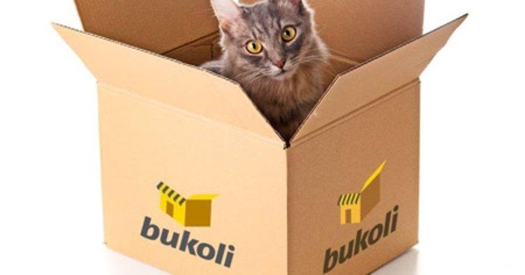 Borusan, Bukoli'yi kapatma kararı aldı