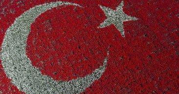 Türk Bayrağı temalı lale peyzajı dünya rekoru kırdı