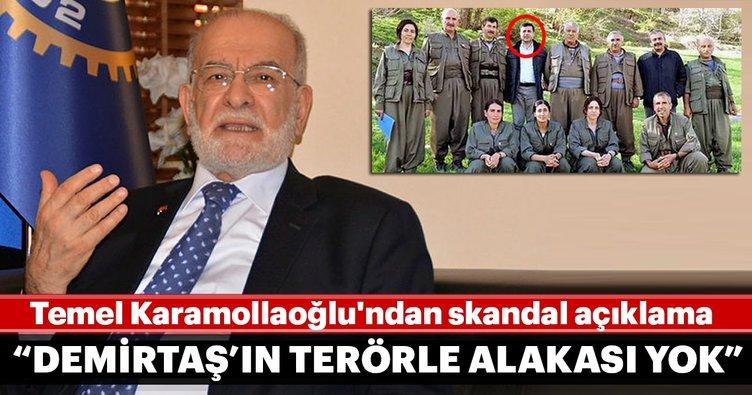 Temel Karamollaoğlu'ndan skandal açıklama: Selahattin Demirtaş'ın terörle alakası yok