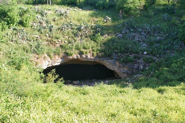 Ünlü Bracken mağarası