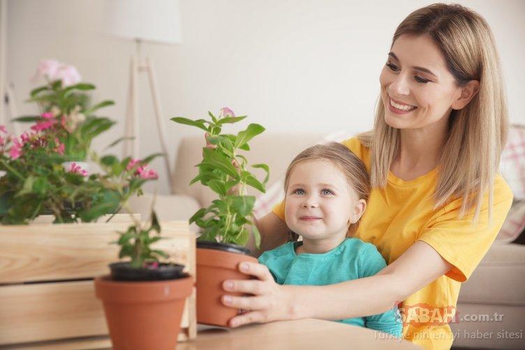 Çocuklarda alerjiye karşı 10 etkili önlem