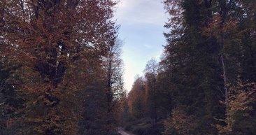Karadeniz'in Nebiyan Dağı'nda sonbahar!
