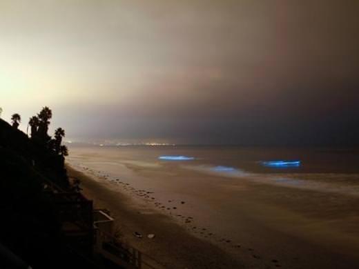 Parlak mavi dalgaların sırrı çözüldü