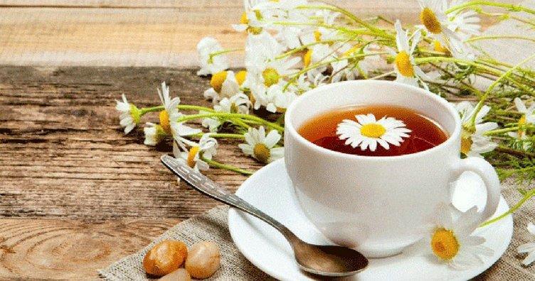 Papatya çayının faydaları nelerdir? İşte şifalı bitki papatya çayının faydaları..