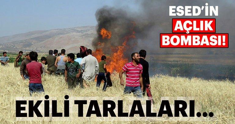 Esed, Açlık Bombası ile ekili tarlaları yakıyor
