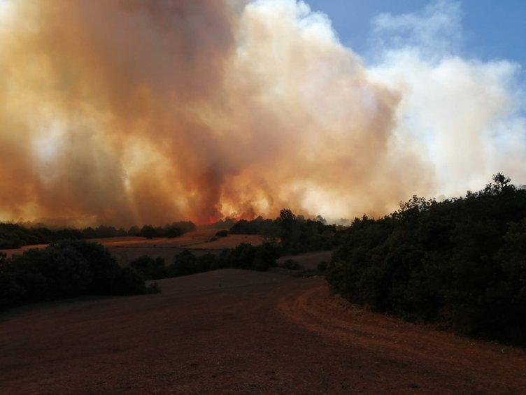 Bursa'daki orman yangınında yeni gelişme