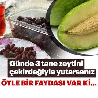Zeytini çekirdeğiyle yutmanın faydalarına inanamayacaksınız! Mucizevi besin zeytin hakkında bu bilgiler şaşırttı!