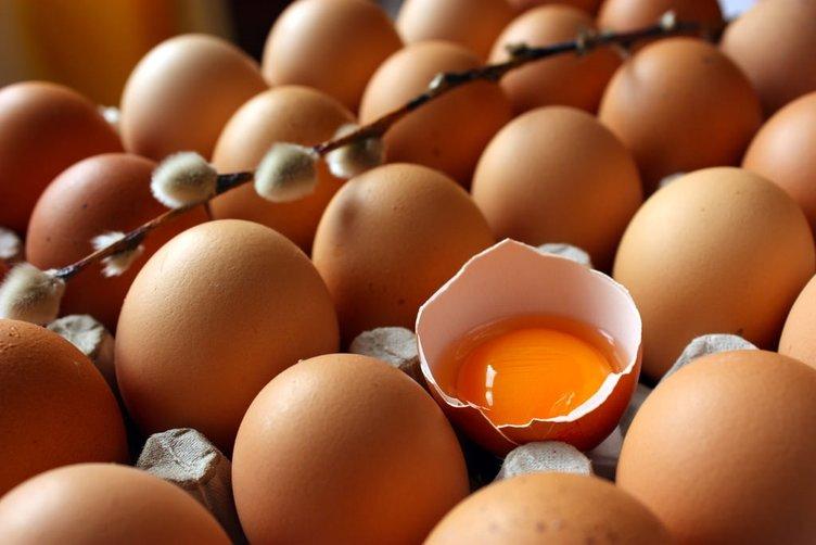 Yumurta, süt ve peynir alırken bunlara dikkat edin!