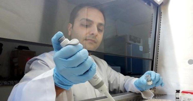 Türk bilim insanı, MS hastalığını engelleyecek ilaç üretti