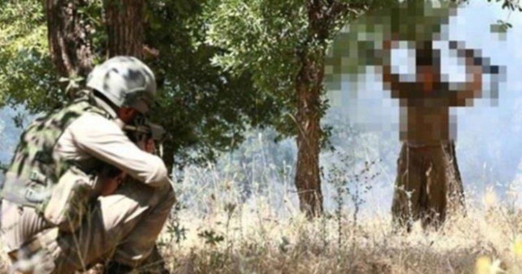 Siirt'te ikna edilen 2 PKK'lı, teslim oldu