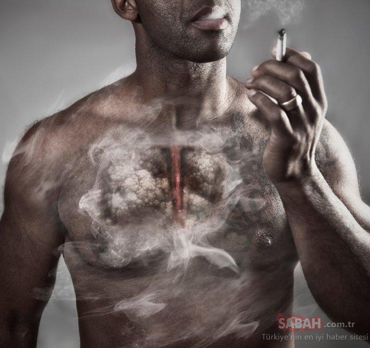 Sigara içenlere öyle bir faydası var ki...