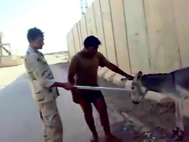 Iraklı askerlerden eşeğe inanılmaz işkence!