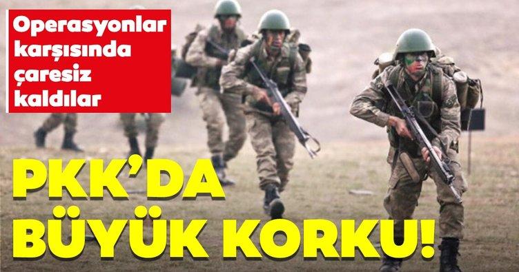 Operasyonlar karşısında çaresiz kaldılar! PKK'da büyük korku