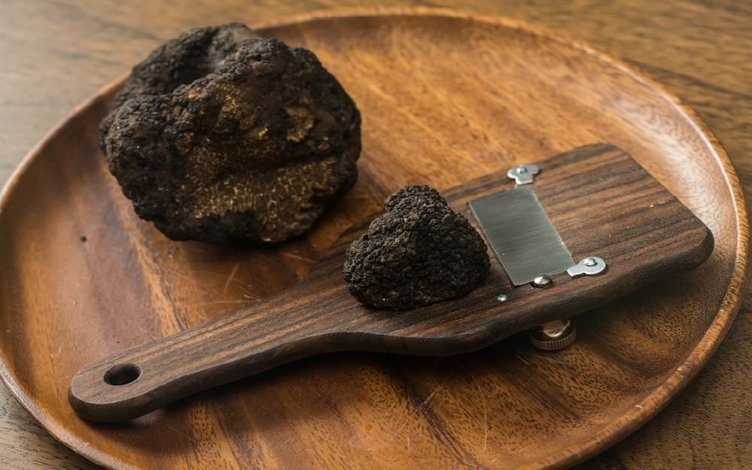 Trüf mantarı: Siyah elmasın peşinde