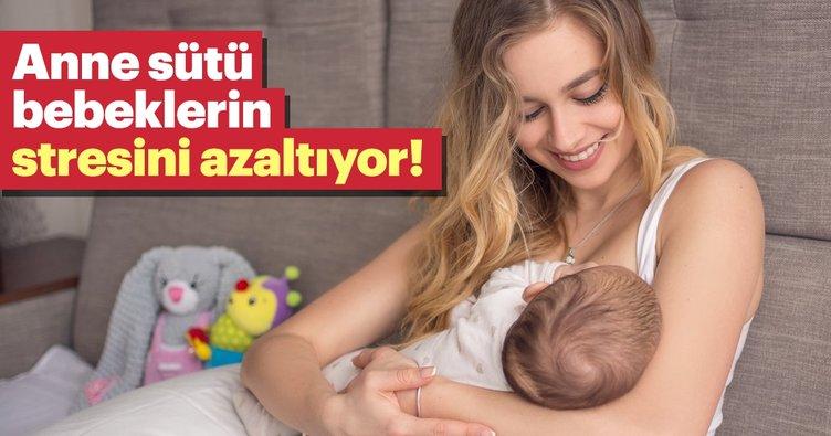 Anne sütü bebeklerin stresini azaltıyor!