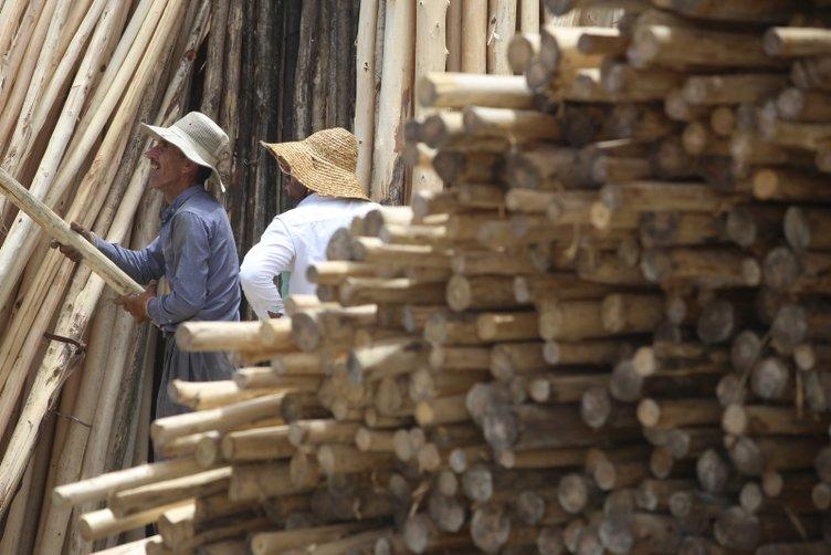 Irak'ta odun pazarı