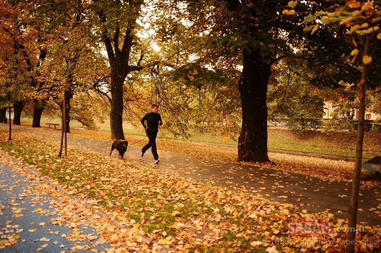 Tatilini bu mevsime bırakanlar için... Sonbaharın çok yakıştığı şehir!