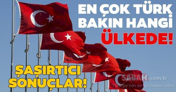 Şaşırtan rakamlar... En fazla Türk bu ülkelerde yaşıyor!