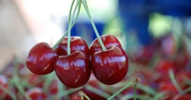 Kirazın faydaları nelerdir? Kiraz yemenin bilinmeyen yararları!