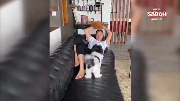 Hülya Avşar köpeğiyle zaman geçirdiği anları takipçileriyle paylaştı   Video