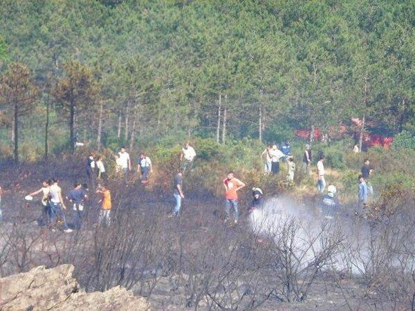 Sultanbeyli'de orman yangını