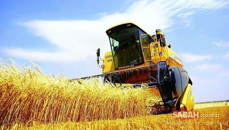 Tarımda dev hamle! Dijital tarım pazarı nedir? İşte tüm detaylar...