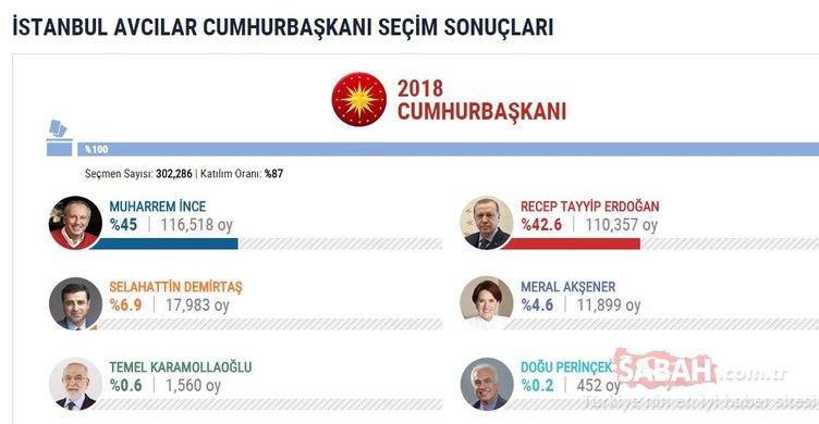 İşte İstanbul ilçelerinde cumhurbaşkanlığı seçim sonuçları