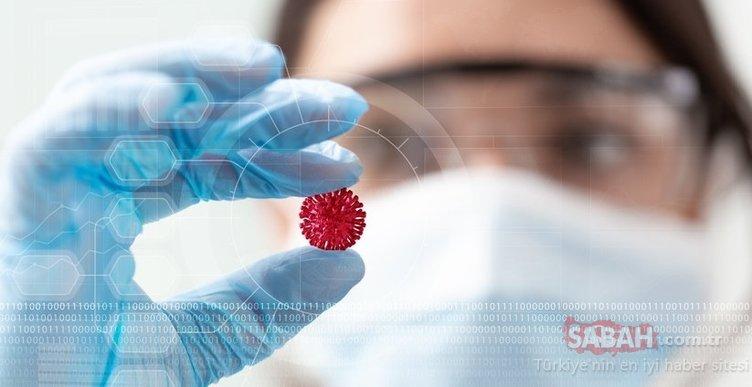 Corona virüs Covid-19 benzeri yeni virüs ortaya çıktı! Bilim insanlarından açıklama geldi!