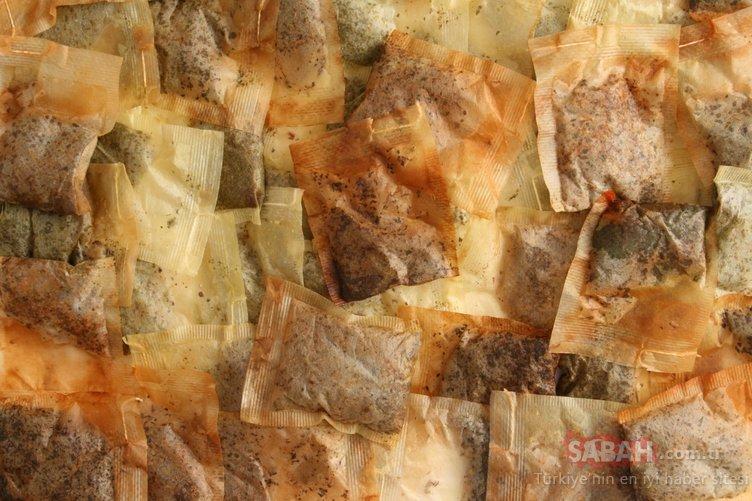 Bitki çayları hakkında korkutan açıklama! Böcek parçaları, kaş ve kirpik bulundu
