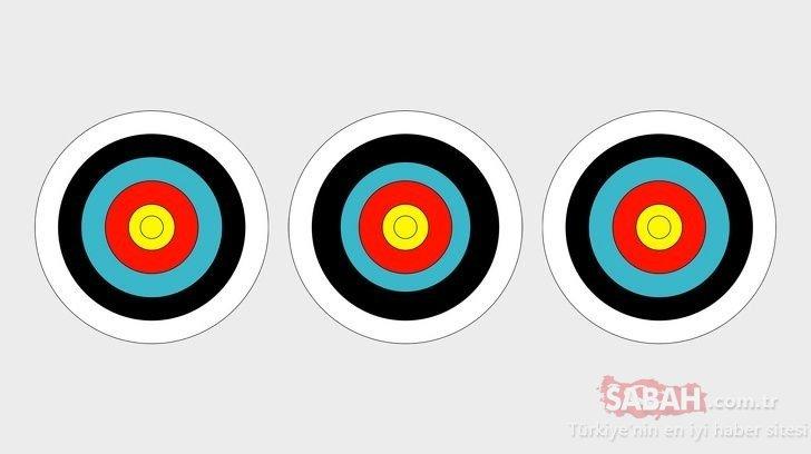 Dünyanın en zor dikkat testi: Hedef tahtalarından hangisi farklı?